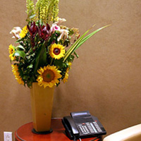 Flowers for your corporate environment